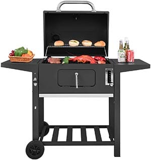 royal gourmet: best charcoal grill