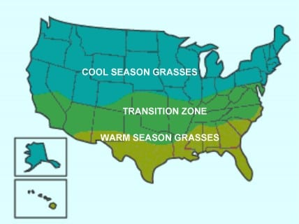 Warm and cool season grasse