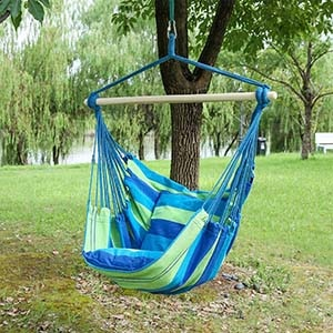Blissun Hanging Swing Chair with Two Cushions